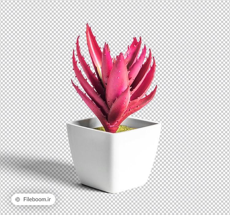 موکاپ خارق العاده گلدان گیاه