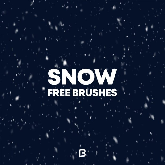 Snow free brushes 12498 700x700 - Snow_free_brushes_12498