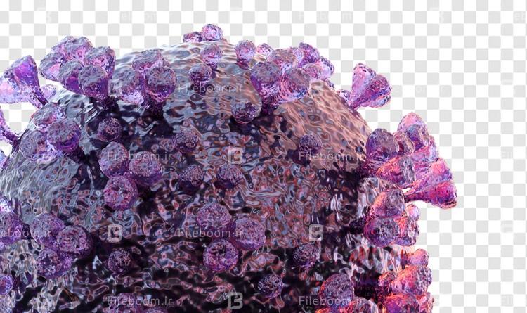 لایه باز ویروس کرونا Coronavirus