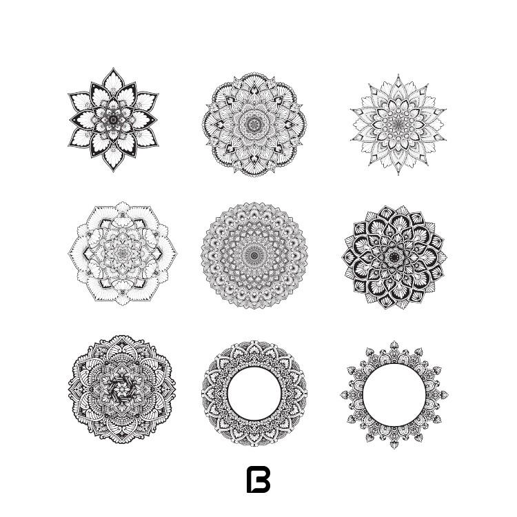 وکتور اسلیمی گل و دایره