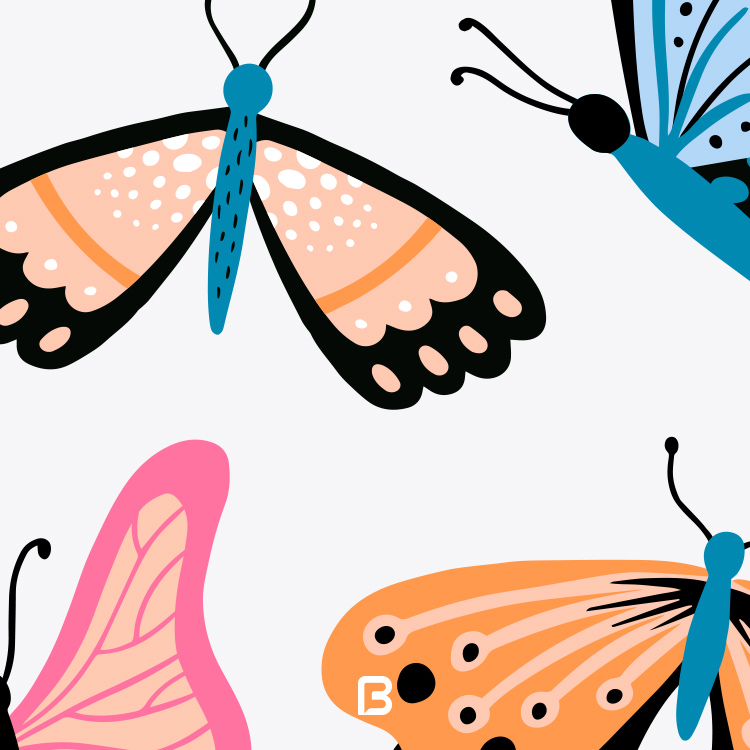 مجموعه ۲۰ وکتور پروانه