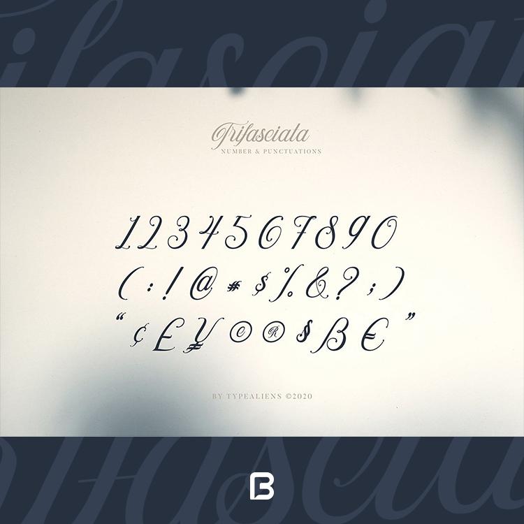 فونت انگلیسی شکسته Trifasciata font